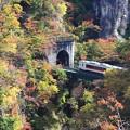 写真: 紅葉列車 PERT(2)