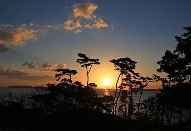 写真: 松島に朝陽昇る