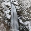 写真: 厳冬期の秋保大滝