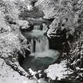 写真: 厳寒の鳳鳴四十八滝