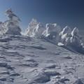 写真: 風雪の造形