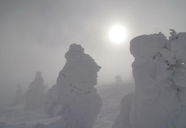 Photos: 濃霧と地吹雪の中