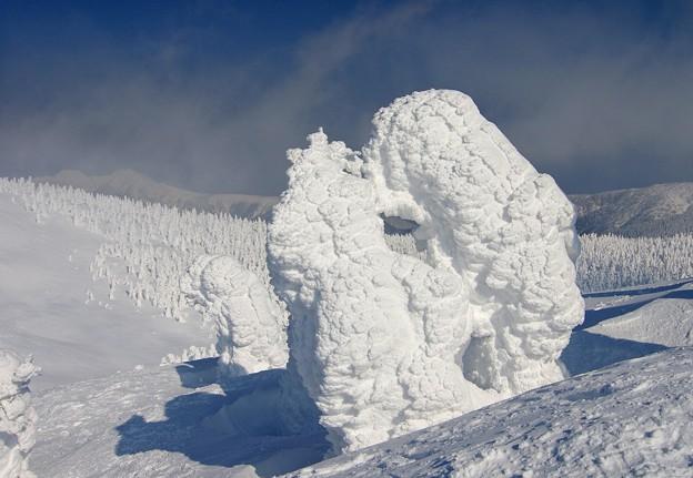 Photos: 樹氷の様々な造形