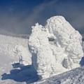 樹氷の様々な造形