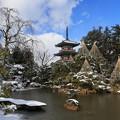 Photos: 日本庭園の美