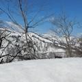 春なのに冬景色