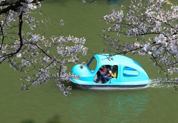 写真: 水上自動車のように