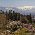 写真: 花見山からの眺望