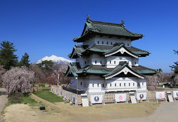 Photos: 弘前城桜のころ