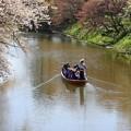 Photos: 和船でお濠めぐり