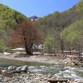 白神山地の暗門川