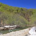 暗門川新緑の候