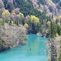 写真: 深い森の美山湖