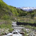 写真: 白神山地の主峰