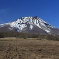 写真: 津軽富士の春