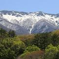 写真: 新緑の向うは冬景色