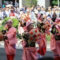 写真: 山形花笠踊り