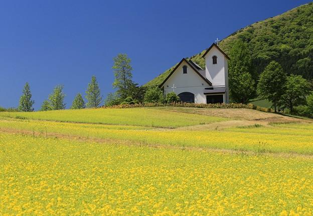 写真: 菜の花丘の教会