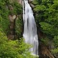 写真: 秋保大滝の豪快さ