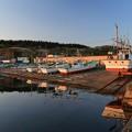 写真: 朝の静かな漁港