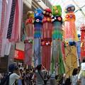 写真: 芸術美の伝統七夕