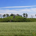 避難の丘(2)