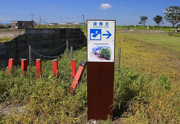 写真: 避難丘への標示