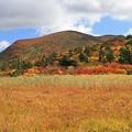 写真: 栗駒山の紅葉美