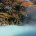 写真: 高原の秘湯