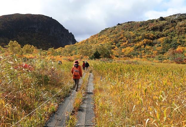 写真: 秋深まる名残ヶ原