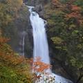 写真: 飛沫舞う秋保大滝