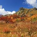 写真: 紅葉盛り