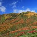 写真: 彩る栗駒山の絶景