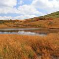 写真: 高原の池の静けさ