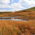 Photos: 高原の池の静けさ