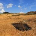 写真: 絵本のような草原