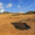 Photos: 絵本のような草原