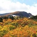 写真: 深山の紅葉美