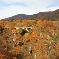美妙な紅葉の鳴子峡