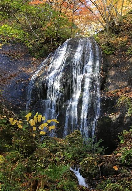 写真: 達沢の女滝