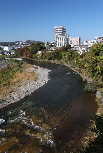 写真: 杜の都の広瀬川