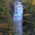 写真: 谷間に轟く秋保大滝