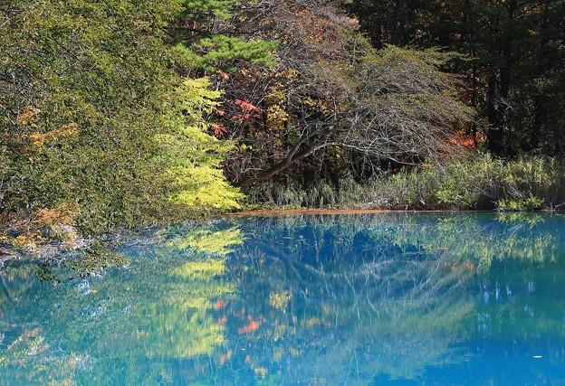 Photos: 魅惑の五色沼