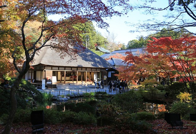 Photos: 晩秋の円通院
