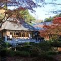 写真: 晩秋の円通院