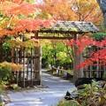 写真: 門を潜れば彩り庭園