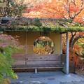 写真: ここも松島