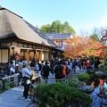 写真: 松島円通院