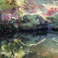 写真: 池の辺