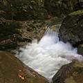 写真: 深山の渓流
